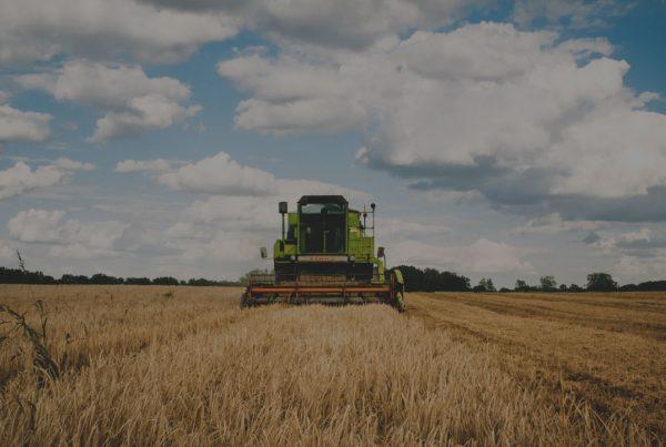 background_harvest-claas